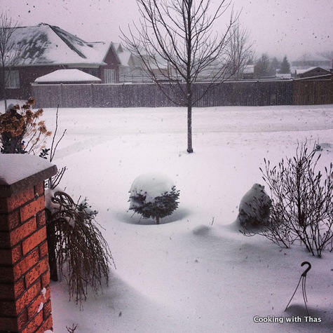 snow capped copy