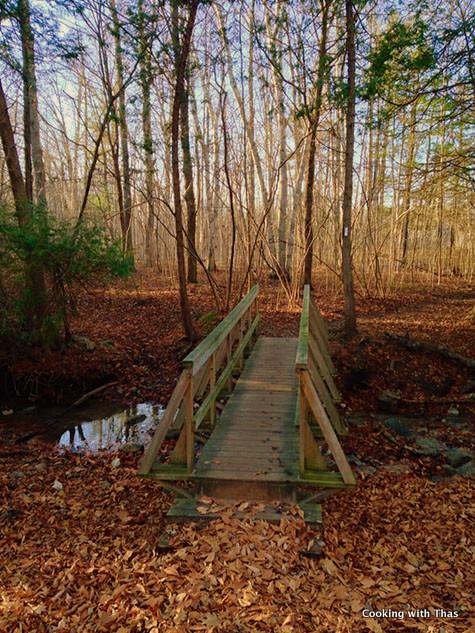 Komoka Trail